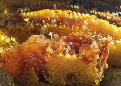 soil-honey-1534287_1920